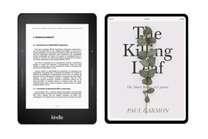 ebook self publishing bundle